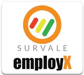 Employee experience surveys